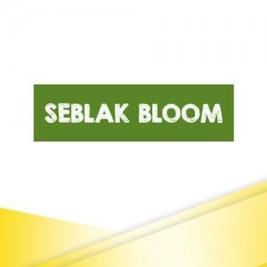SEBLAK BLOOM